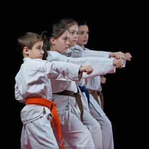 Martial Arts -1st Grade to 7th Grade
