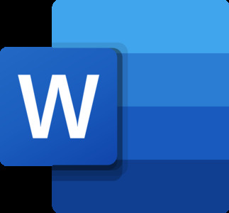Microsoft Word 2 month course