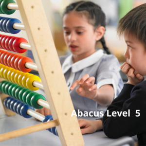 Abacus Level 5