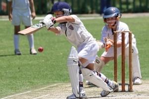 Cricket Training  -For Weekdays