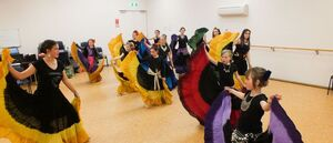 Belly Dance Classes - Individual