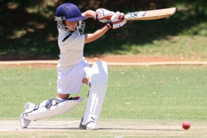 Cricket Training- For Weekends