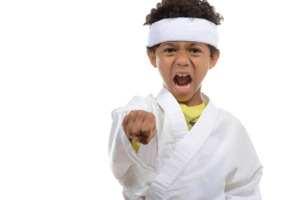 Karate Workshop- Get Combat Skills!