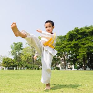 Learn Taekwondo by Harshada Pramod Nalkande