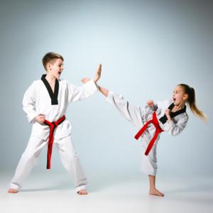 Taekwondo Classes by Satinder Bisht - For Siblings