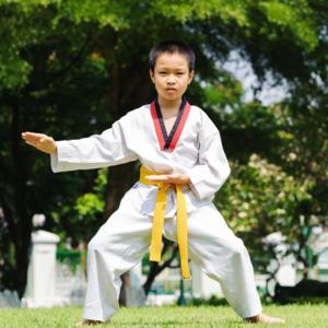 Learn Taekwondo by Satinder Bisht