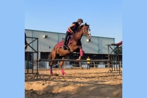 Monthly Horse Riding Training