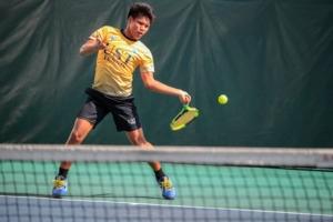 Tennis -Offline Coaching
